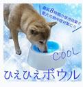 エアコンなしの犬の暑さ対策グッズ 03